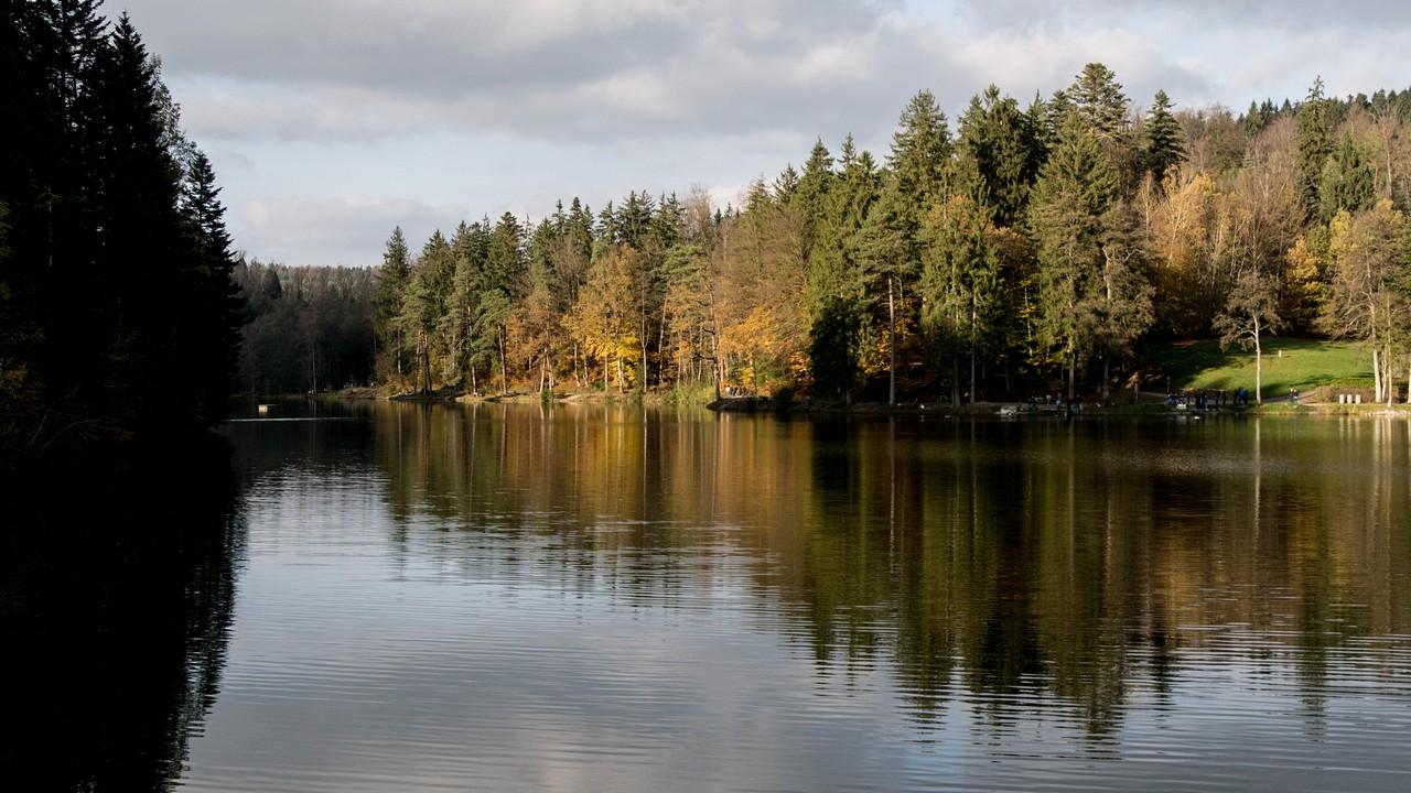 Herbst2017-96.jpg